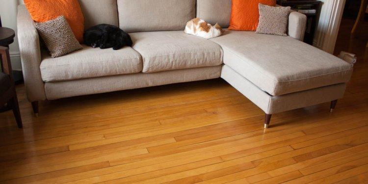 Furniture Legs, 5-1/2